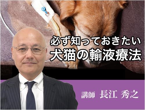 必ず知っておきたい 犬猫の輸液療法