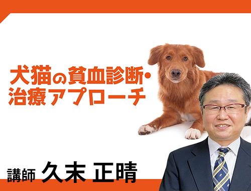 犬猫の貧血診断アプローチ