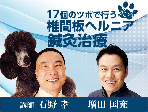 17個のツボで行う 犬の椎間板ヘルニア鍼灸治療