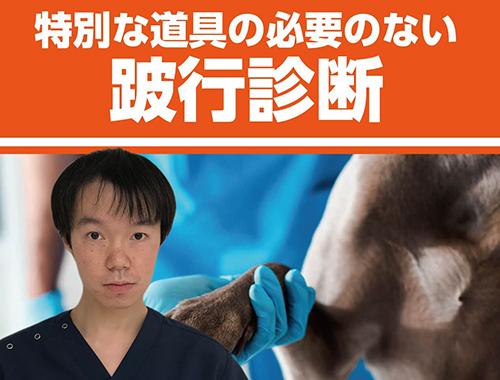 特別な道具の必要のない跛行診断