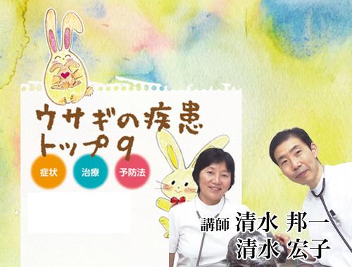 ウサギの疾患トップ9 症状・治療・予防法