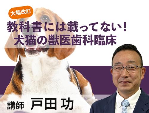 大幅改訂 教科書には載ってない! 犬猫の獣医歯科臨床