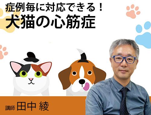 症例ごとに対応できる!犬猫の心筋症